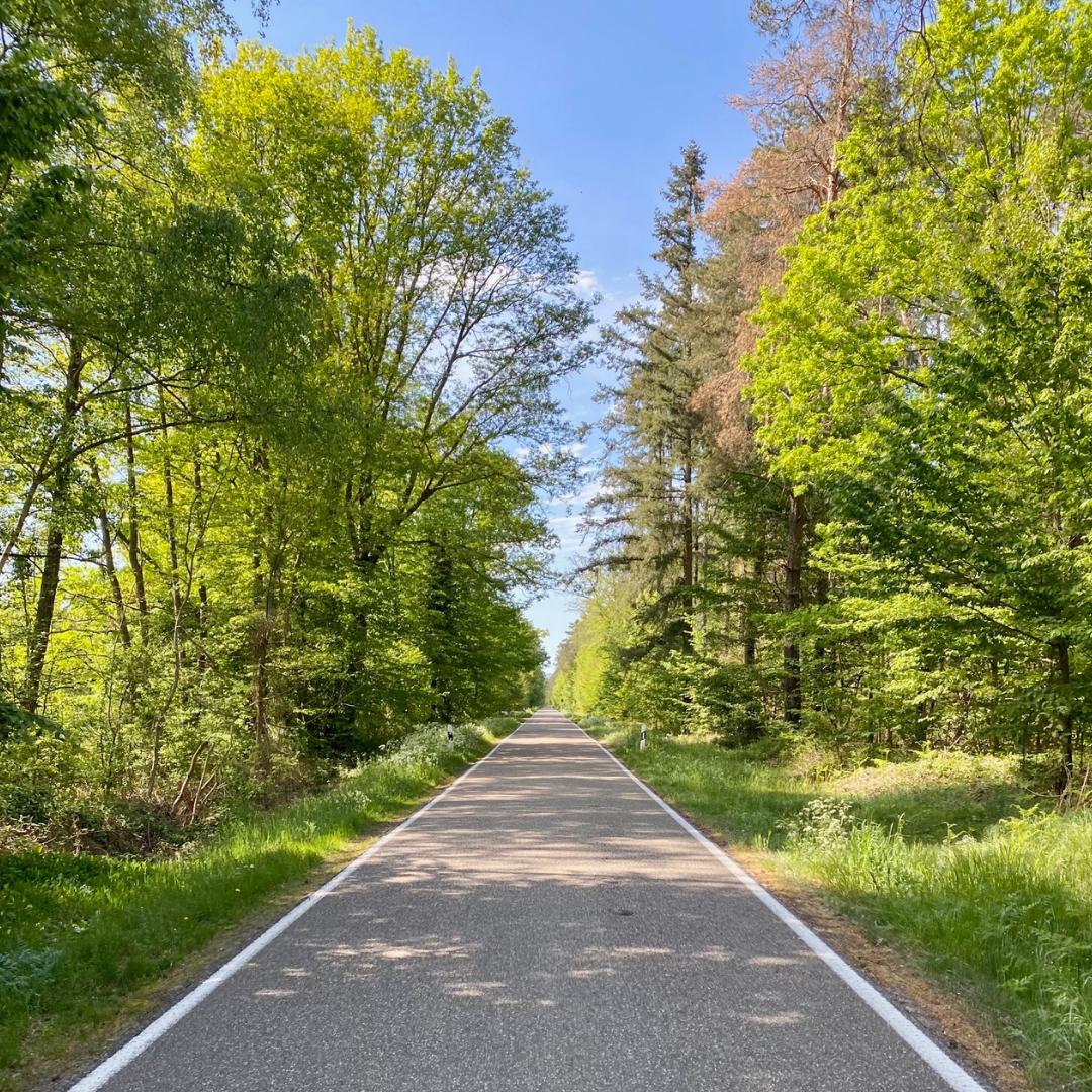 Bienwaldradweg: SPD in Scheibenhardt, Steinfeld und Schaidt mit klarer Haltung