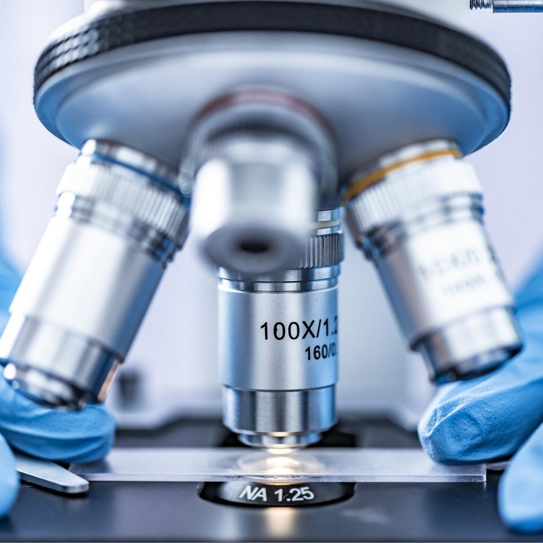 Rheinland-Pfalz soll führender Standort der Biotechnologie werden